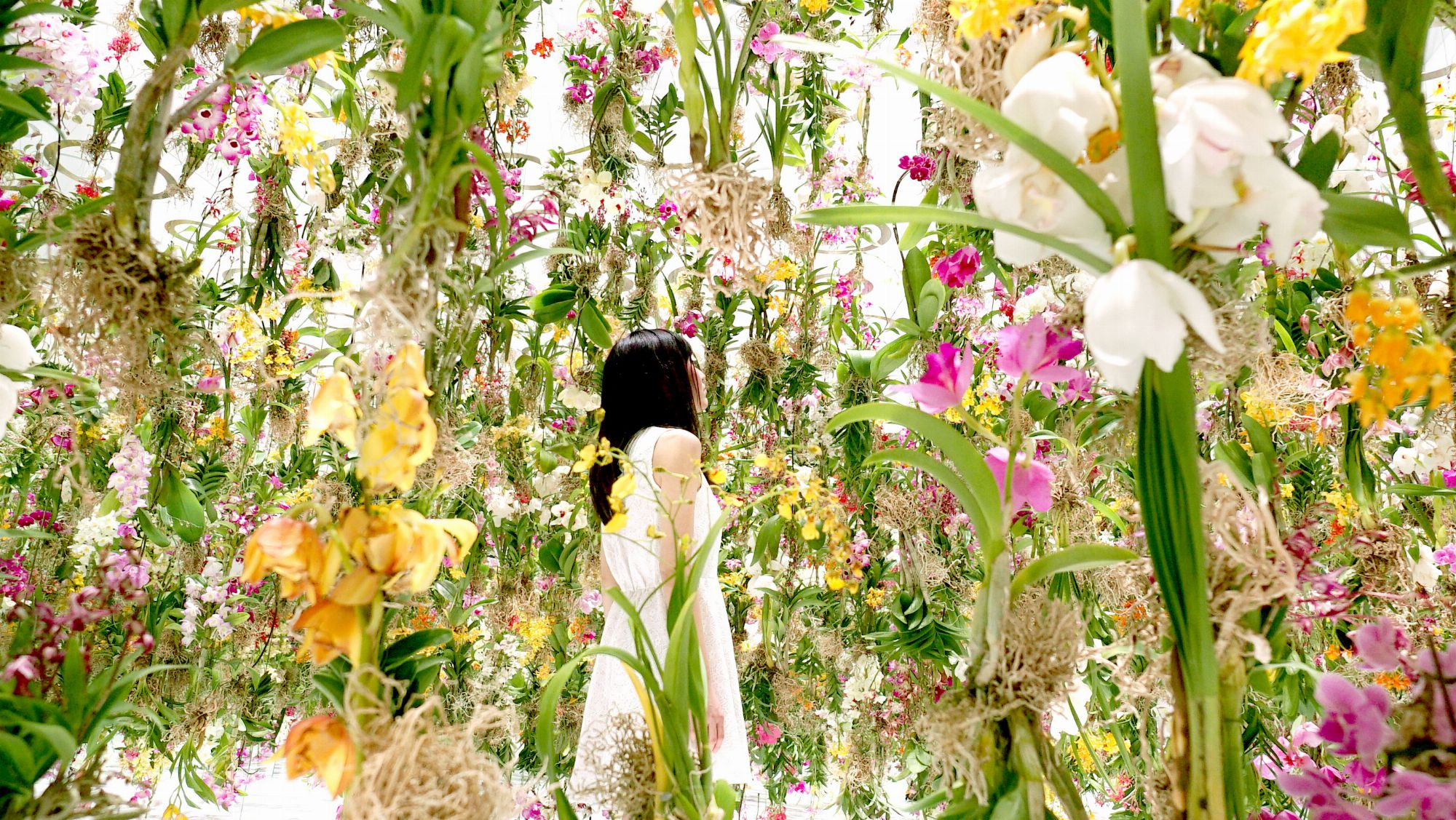 garden design with floating flower garden flowers and i are of the same root the