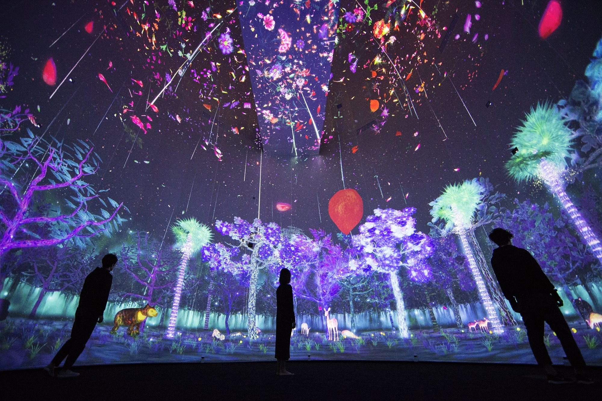 National Museum Of Singapore Teamlab チームラボ